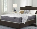 Anniversary Plush Mattress Qn