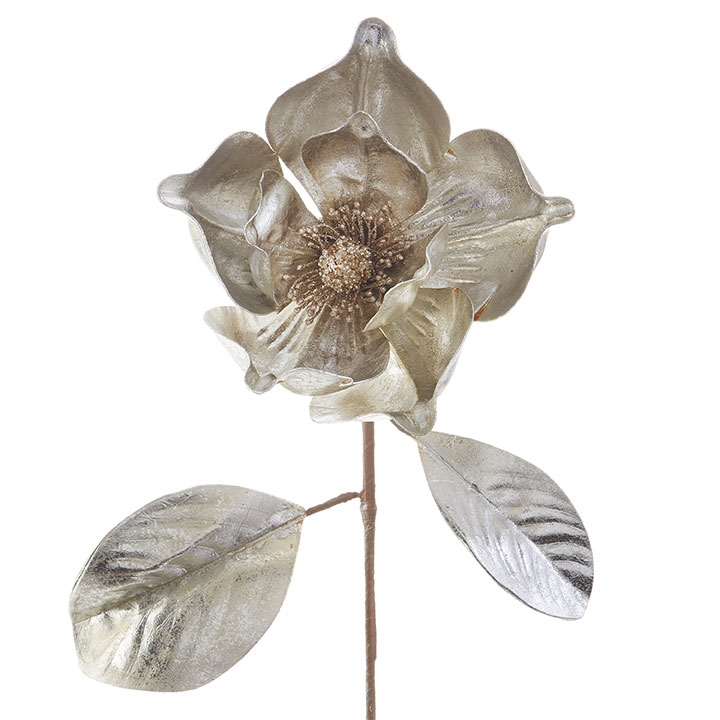 Gold Magnolia Stem 23in