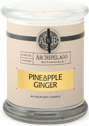 [111322-BB] Pineapple Ginger Jar Candle