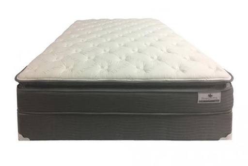 [301274-BB] Platinum Pillowtop Mattress Queen